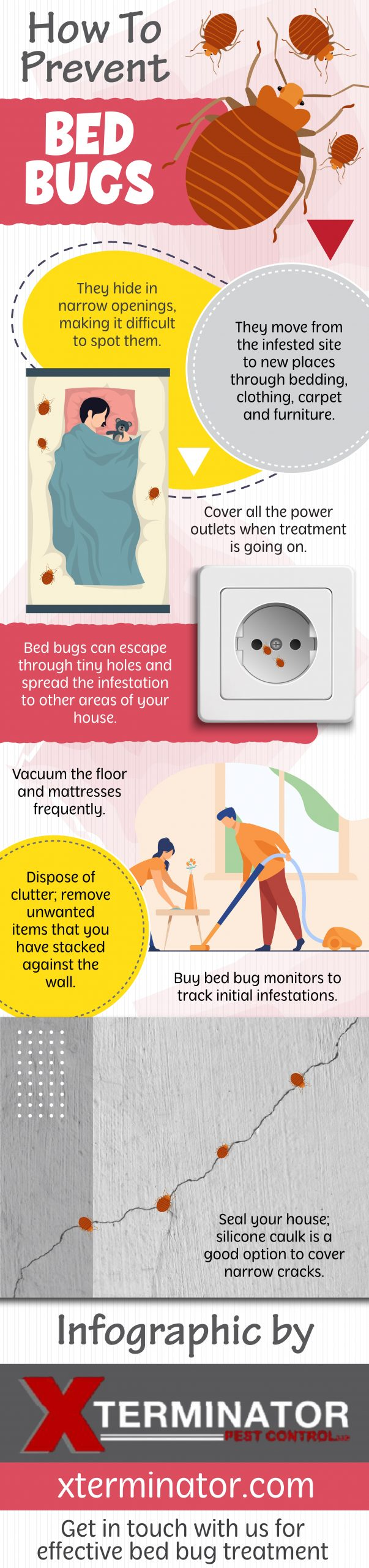 How to Prevent Bed Bugs - Infograph